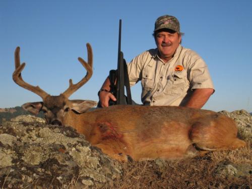 2013 deer 20140128 1361826436