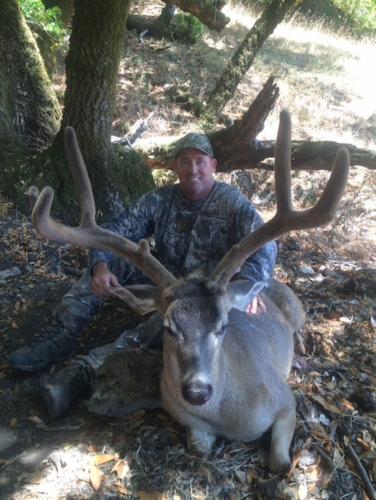 2015 deer 20151221 1043346827