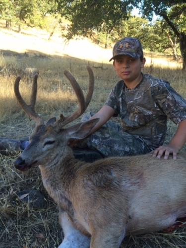 2015 deer 20151221 1918449394