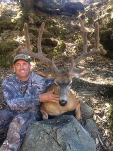 2016 deer 20161219 1972926699