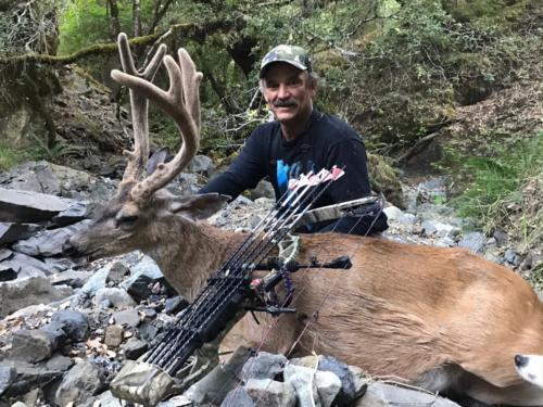 2017 deer 20180305 1817641618
