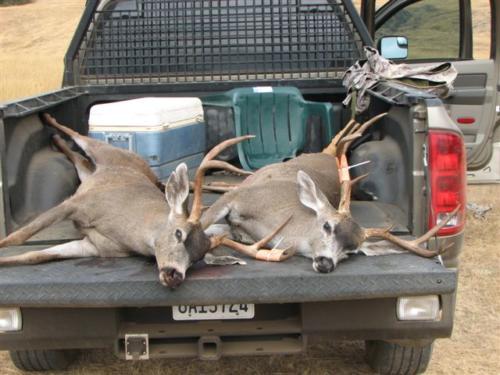 blacktail deer hunting 20100308 1171082513