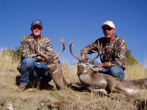 blacktail deer hunting 20100308 1264016015